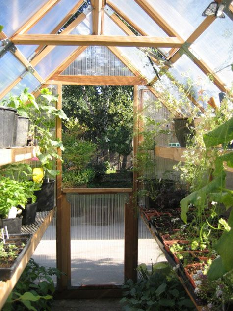 Small Green House In Tight Space Well Done Great Space Planning More Helpful Info On Tomato