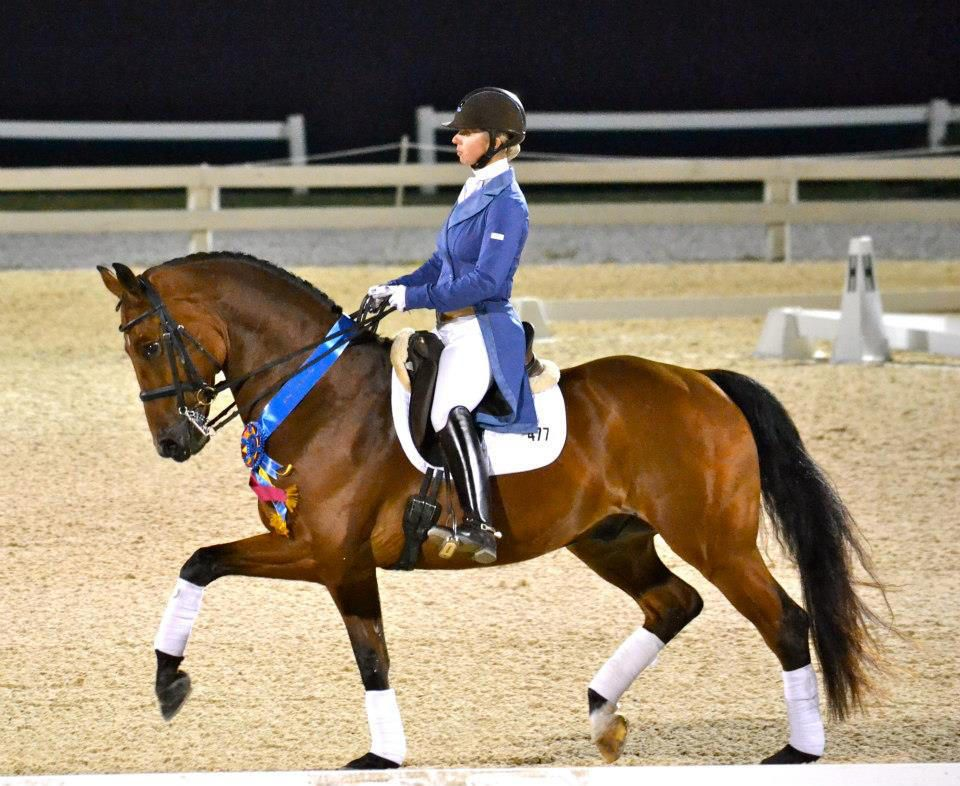 Fireside Farm is home to international Dressage competitor