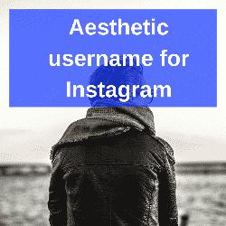Aesthetic Username For Instagram Instagram Username Ideas Instagram Aesthetic Usernames For Instagram