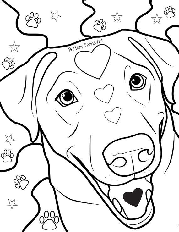 Weimaraner Coloring Page Free Printable Coloring Pages Throughout Free Download Printable Weima Dog Coloring Page Puppy Coloring Pages Golden Retriever Colors