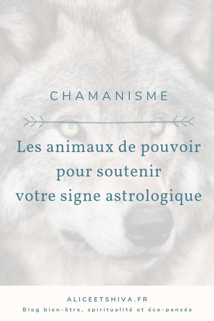 Animaux De Pouvoir Astrologie Astrologie Chamanisme Et Signe