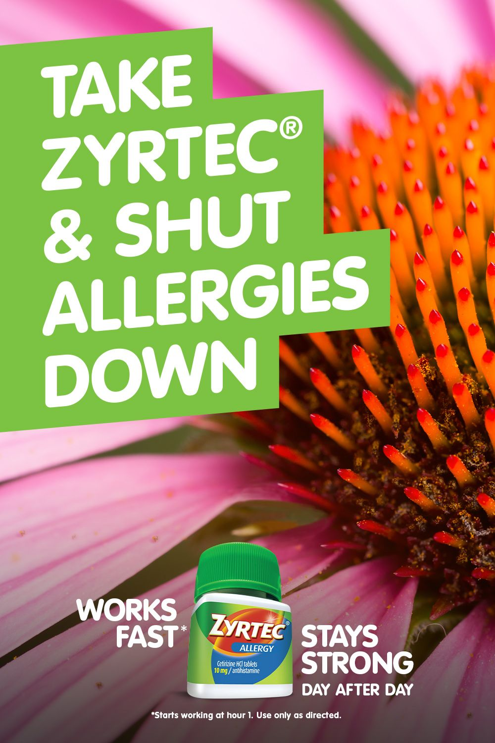 ZYRTEC® starts working at hour 1 and stays strong day after day