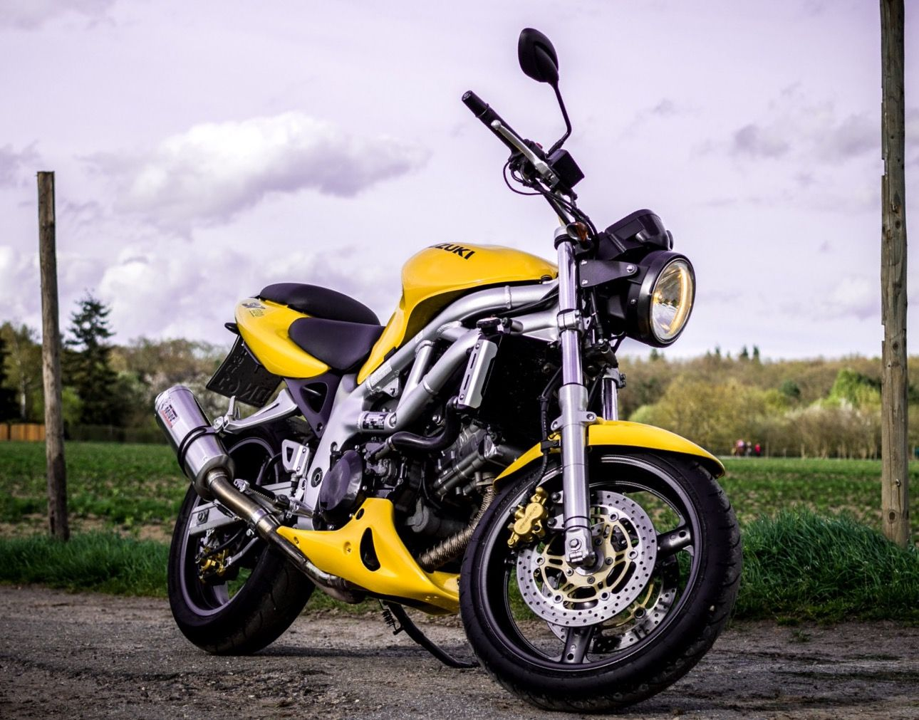 2001 suzuki sv 650 n av tuning dirty rat knubbel. Black Bedroom Furniture Sets. Home Design Ideas