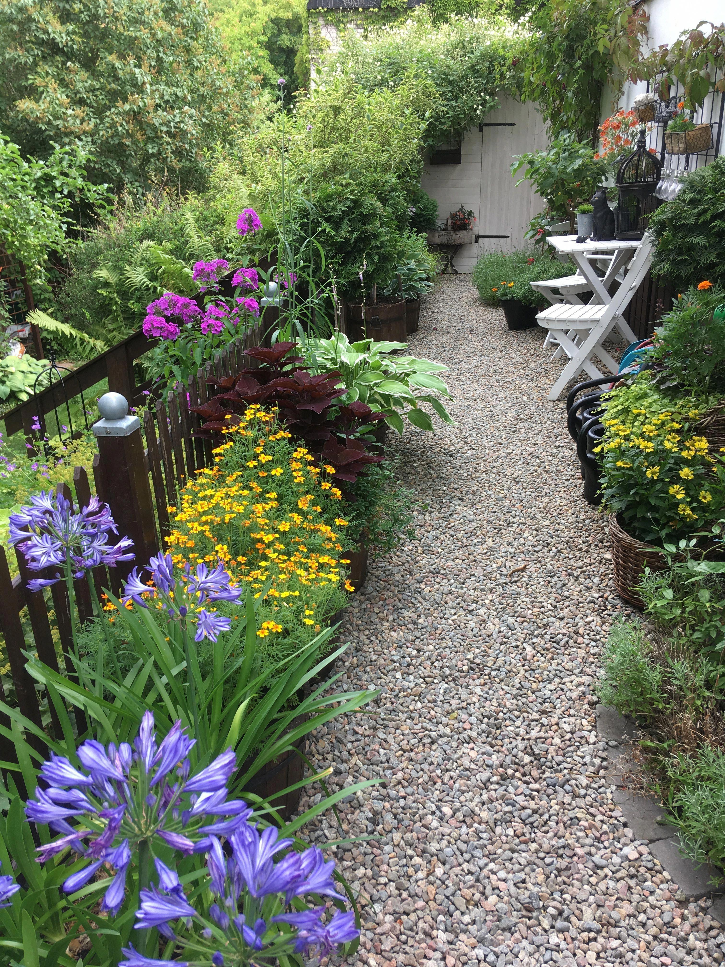 Pin On Gardening Outdoor