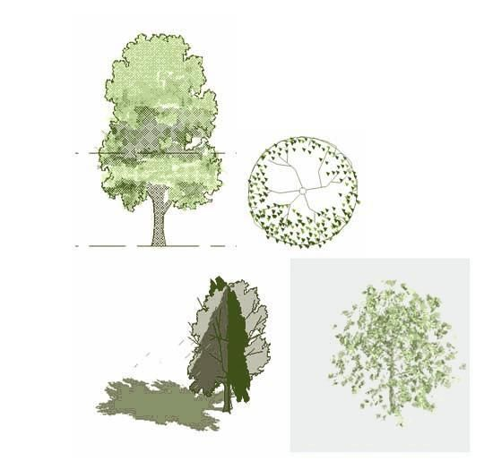 Jonathan Furlongs 2D 3D tree | archi-resources | 3d tree