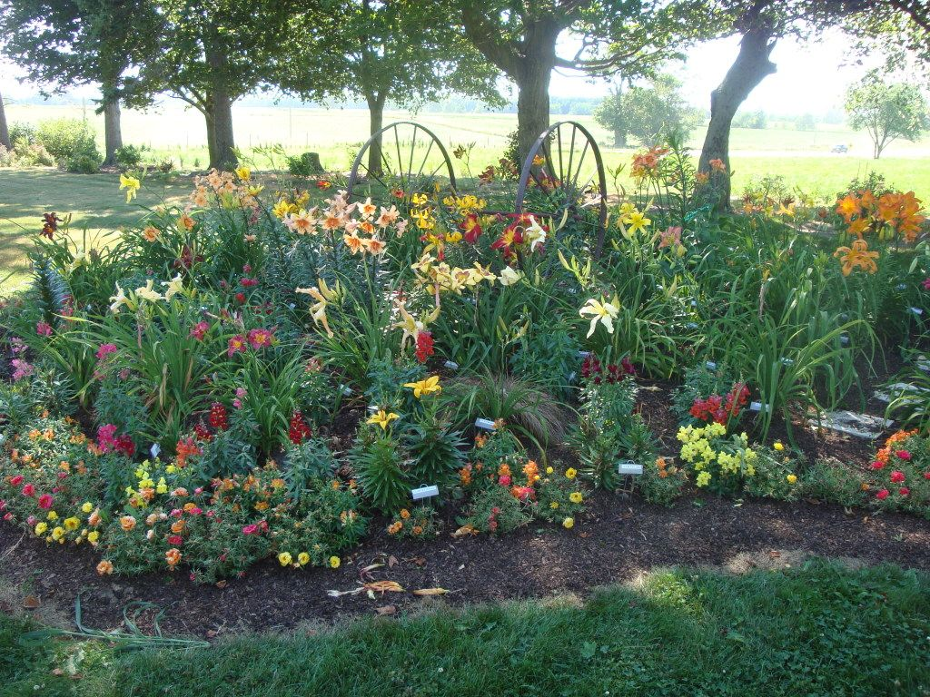 Day lily garden ideas this is the same bed in the summer for Different landscape design