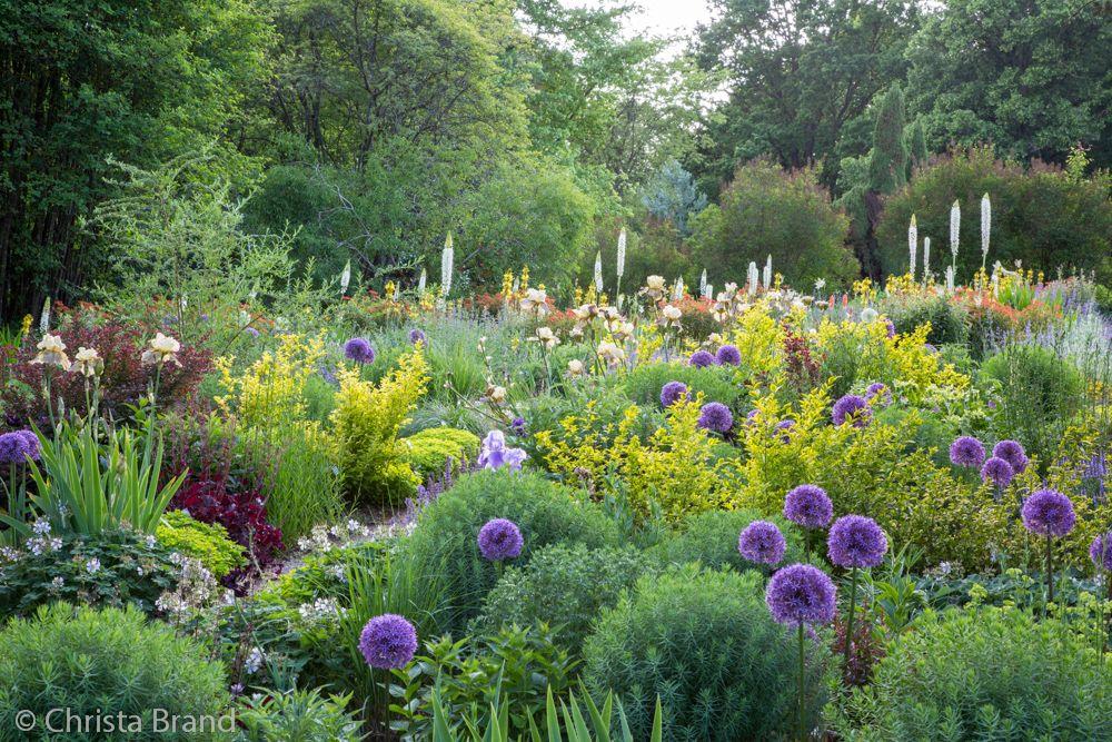 Sichtungsgarten Weihenstephan C Christa Brand Garten Abschussiger Garten Blumenbeet Anlegen