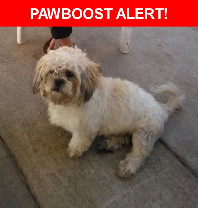 Please spread the word! Jerry was last seen in Pacoima, CA 91331.    Nearest Address: 13677 Osborne Street, CA, United States