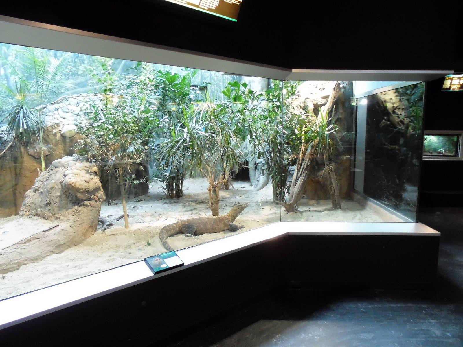 zoo reptile cages for sale - Google zoeken | Zoo | Pinterest ...