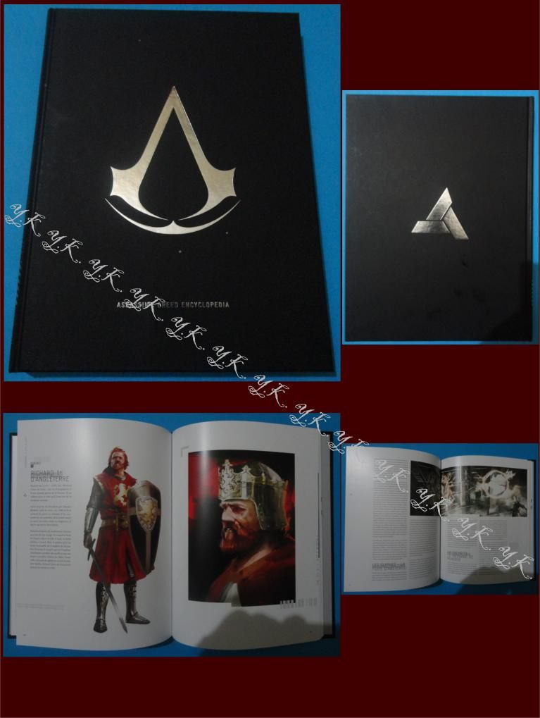 assassin's creed 3 book !
