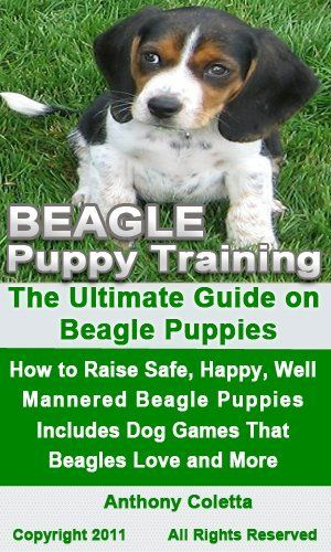 Beagle Puppy Training The Ultimate Guide On Beagle Puppies How