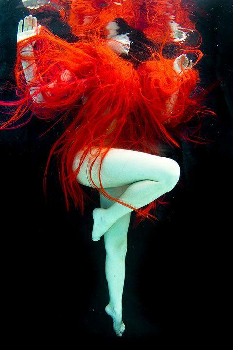 Les photos subaquatiques de Caelum Mero