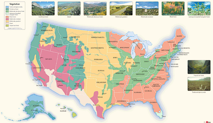 Pin by mapsales.com on Maps for the Classroom | Wall maps, Map, Wall