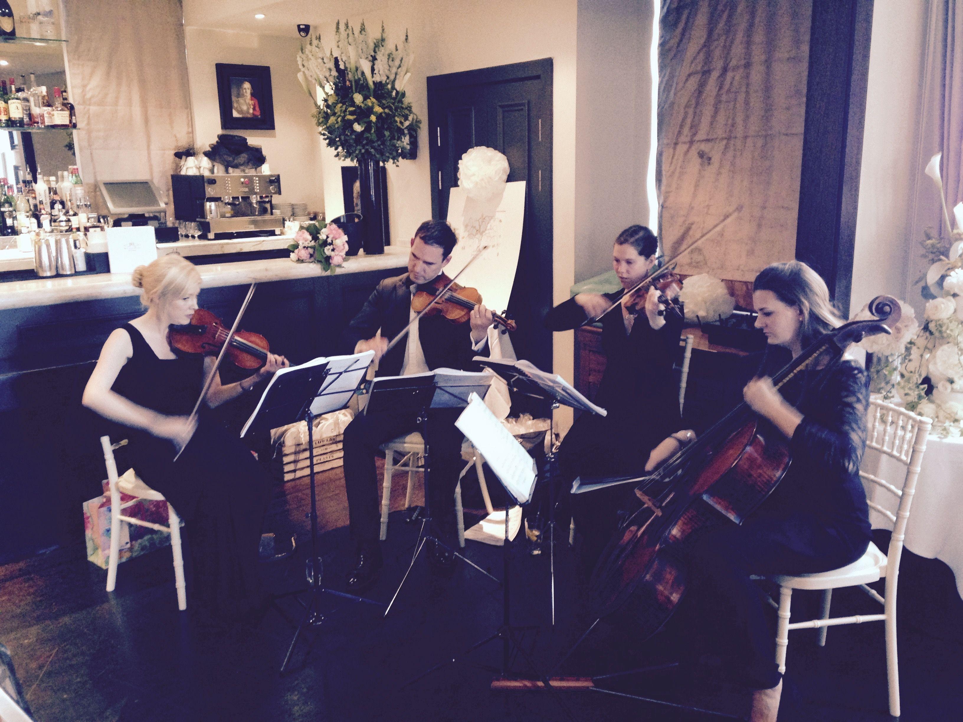String Quartet Wedding.String Quartet Entertaining The Guests At A Wedding In Beaufort