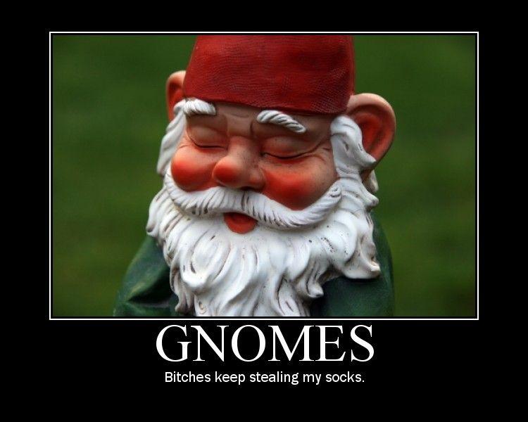 bbf9cb35290b7e51f483f9631d98c8e7 clipart funny gnomes funny pictures pinterest funny gnomes