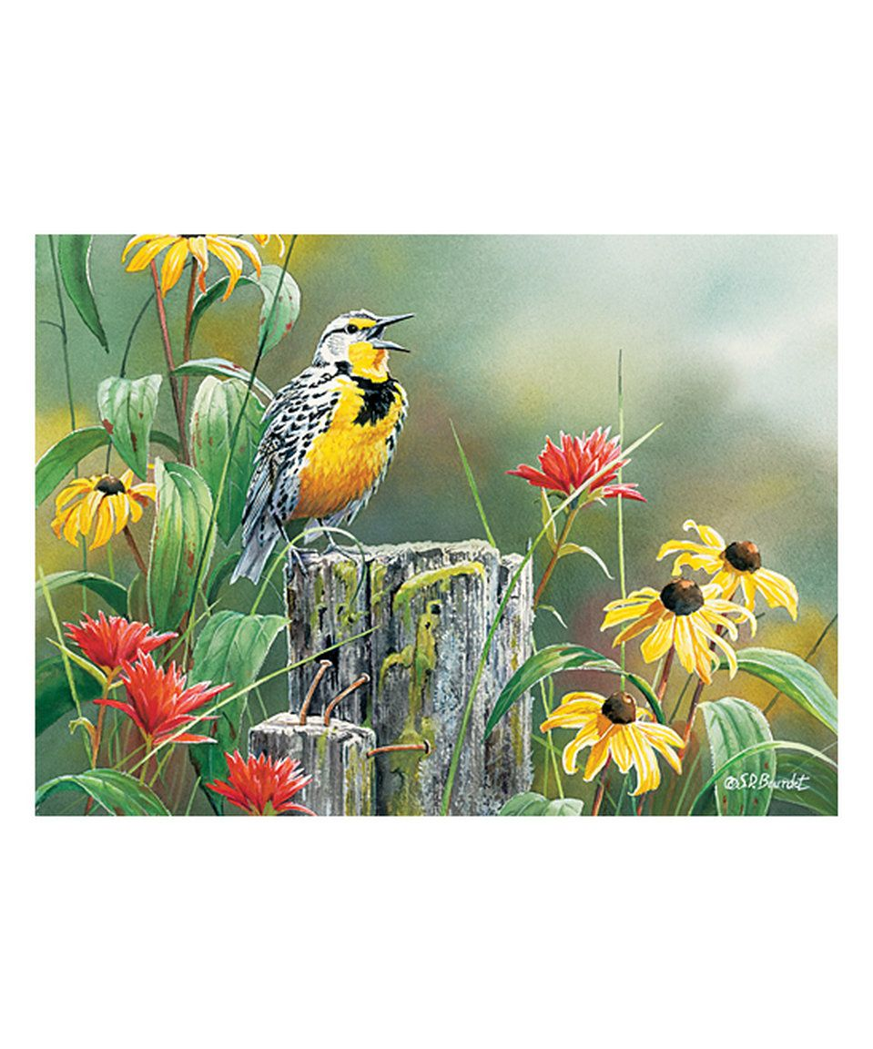 Look at this #zulilyfind! Meadowlark Morning 1,000-Piece Puzzle by Cobble Hill #zulilyfinds