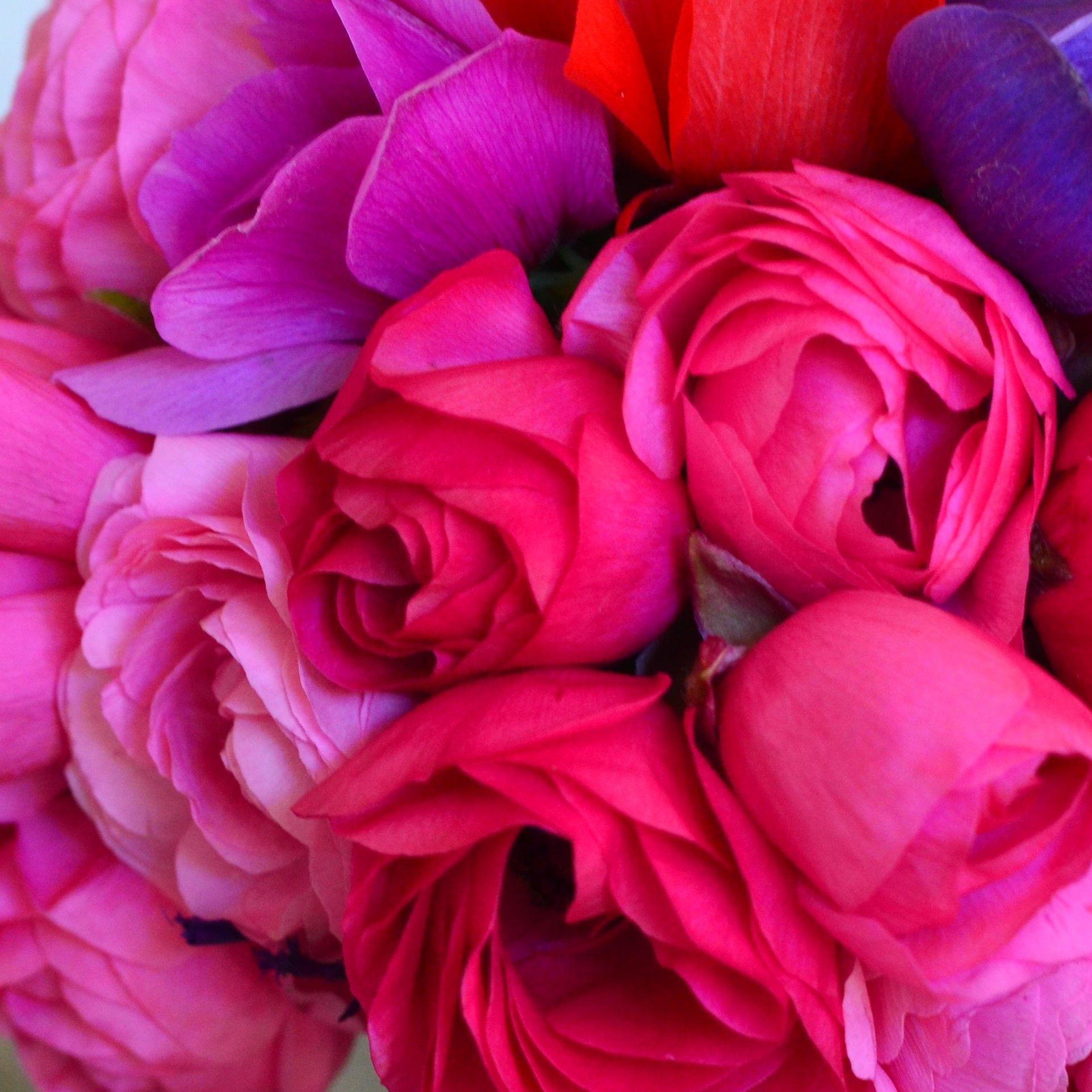 Bloom Room - Bespoke Floral Design. www.bloomroom.co.uk