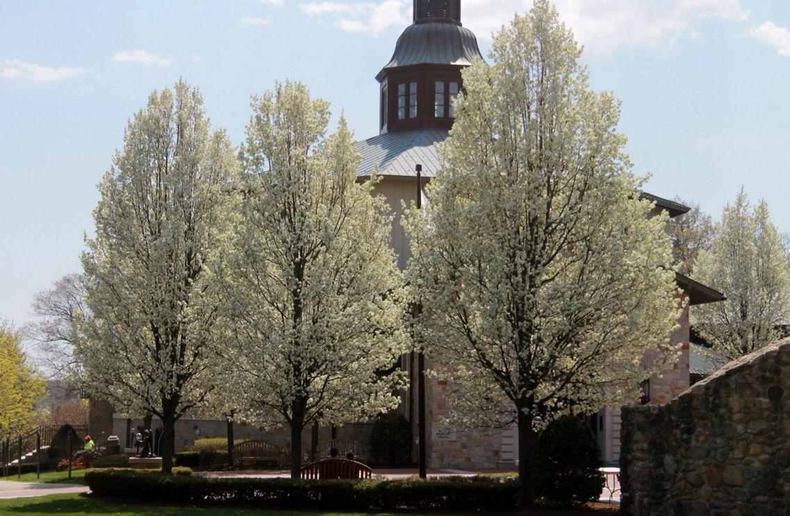 Saint Dominic's Chapel _ Providence College. Providence, RI
