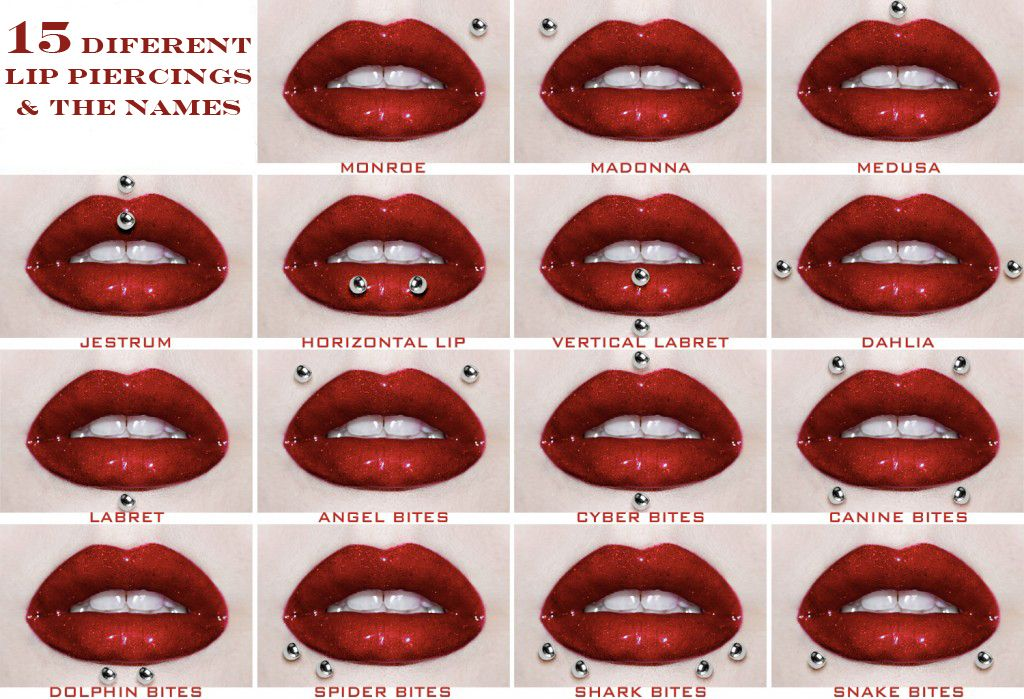 Lip Piercing Diagram And Names House Wiring Diagram Symbols