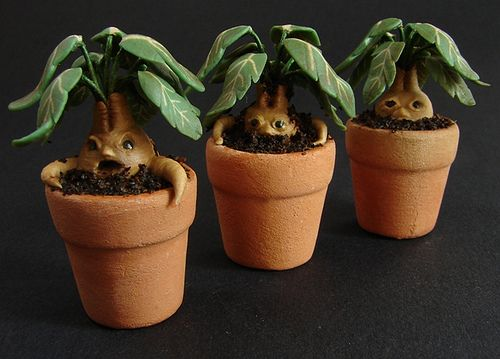 Dollhouse Miniature Potted Mandrakes Group Photo Harry Potter Miniatures Harry Potter Dolls Harry Potter Crafts
