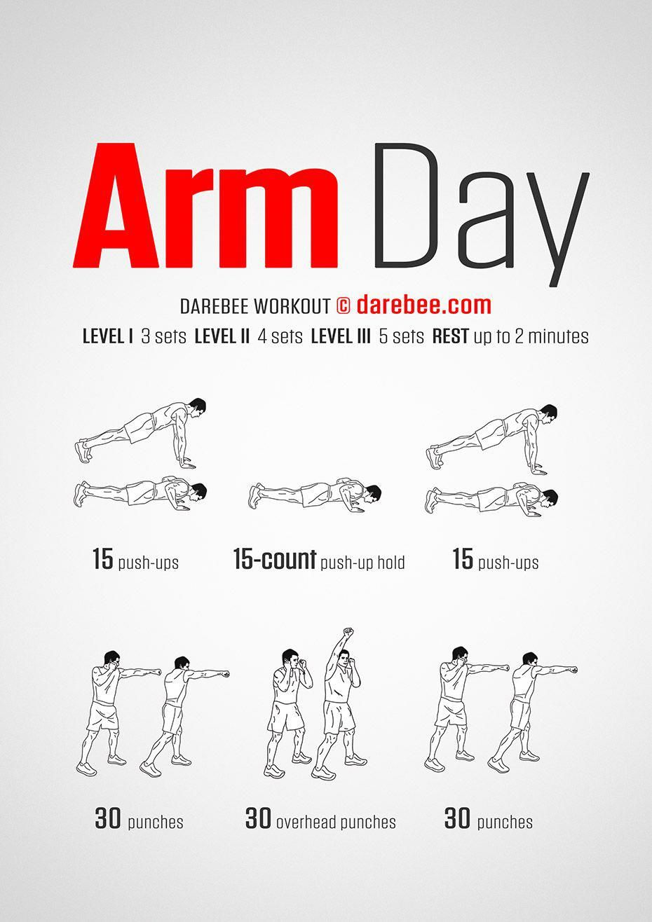 Arm Day Workout NoEquipmentArmWorkouts Arm day workout