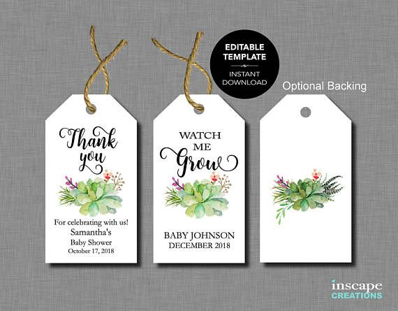 editable baby shower favor tags succulents watch me grow thank