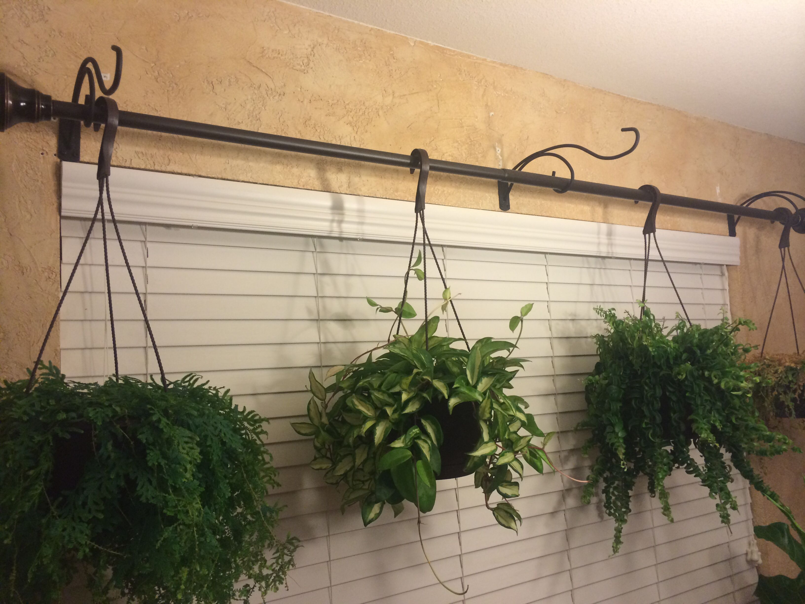expand your hanging plant capabilities use some plant hangers and a curtain rod simple to put. Black Bedroom Furniture Sets. Home Design Ideas