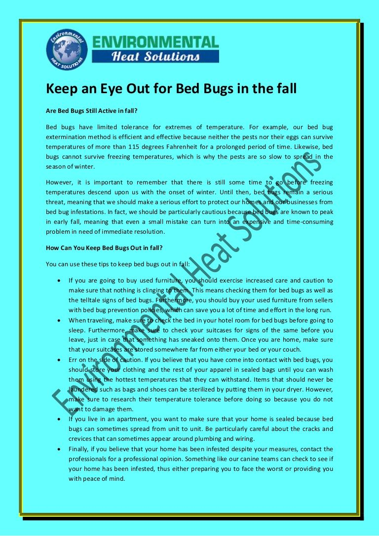 Keep an Eye Out for Bed Bugs in the fall