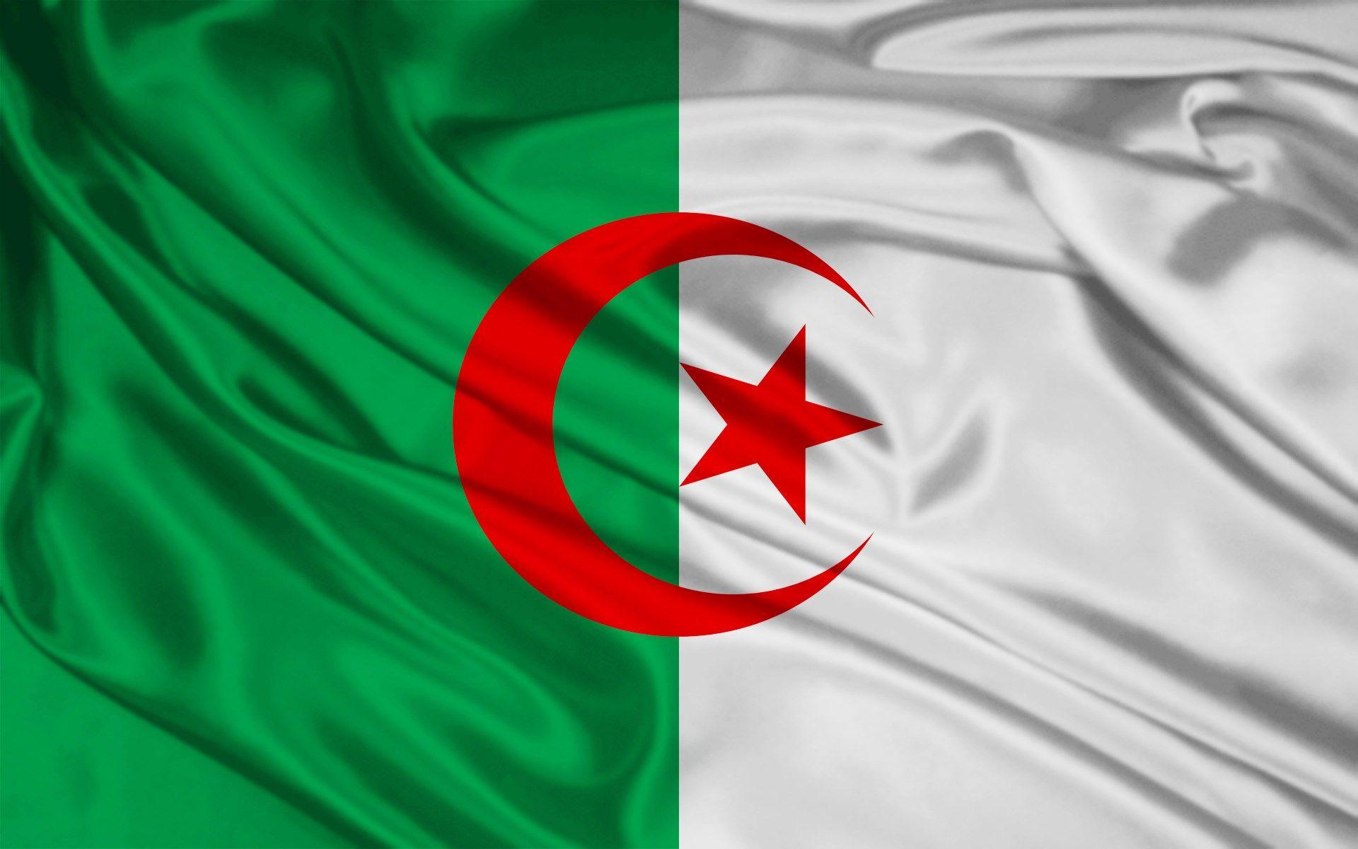 Algeria Flag Algeria Flag Flag Algerian Flag