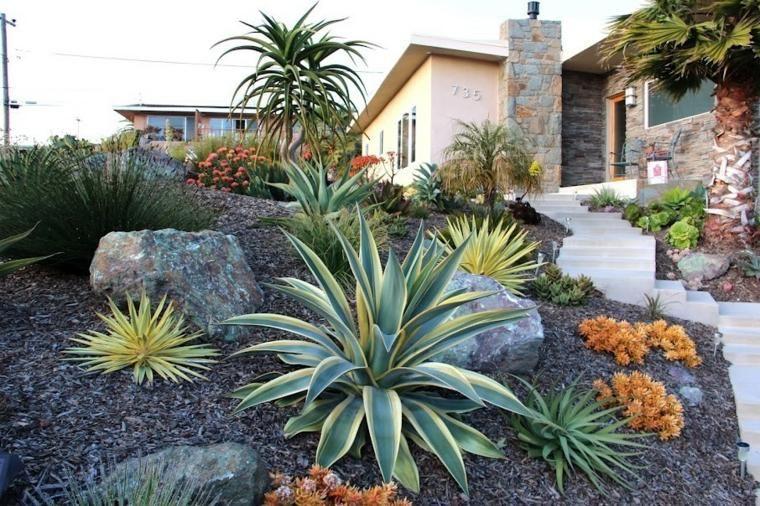 cactes pour amnagement de jardin paysager et design dextrieur - Les Plantes Grasses D Exterieur