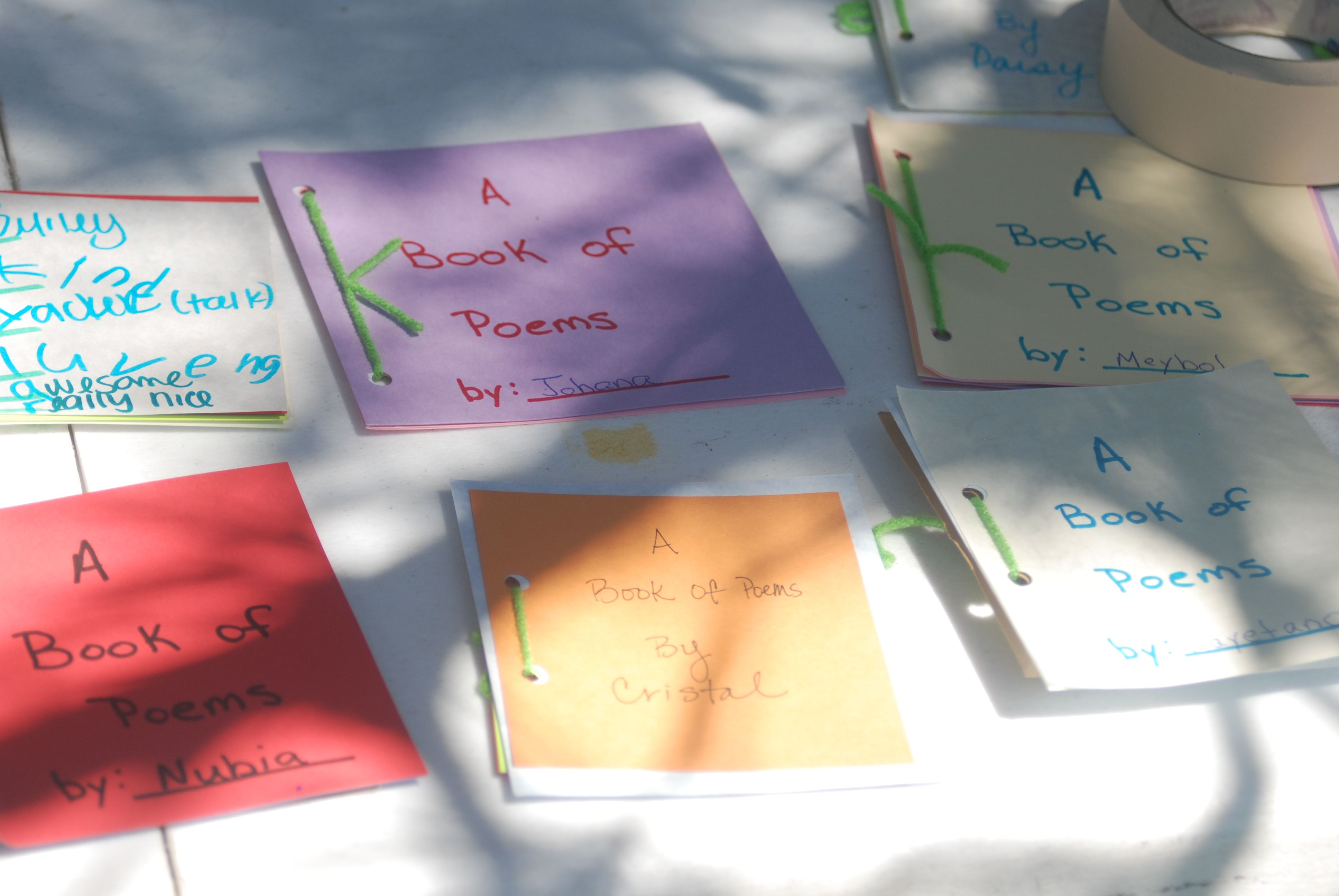 The results of our 2010 Youth Poetry Workshop!  Beautifully bound works of art :)