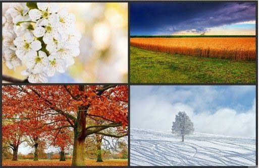 TU SALUD: Calendario anual de las tareas de jardinería: Toda...