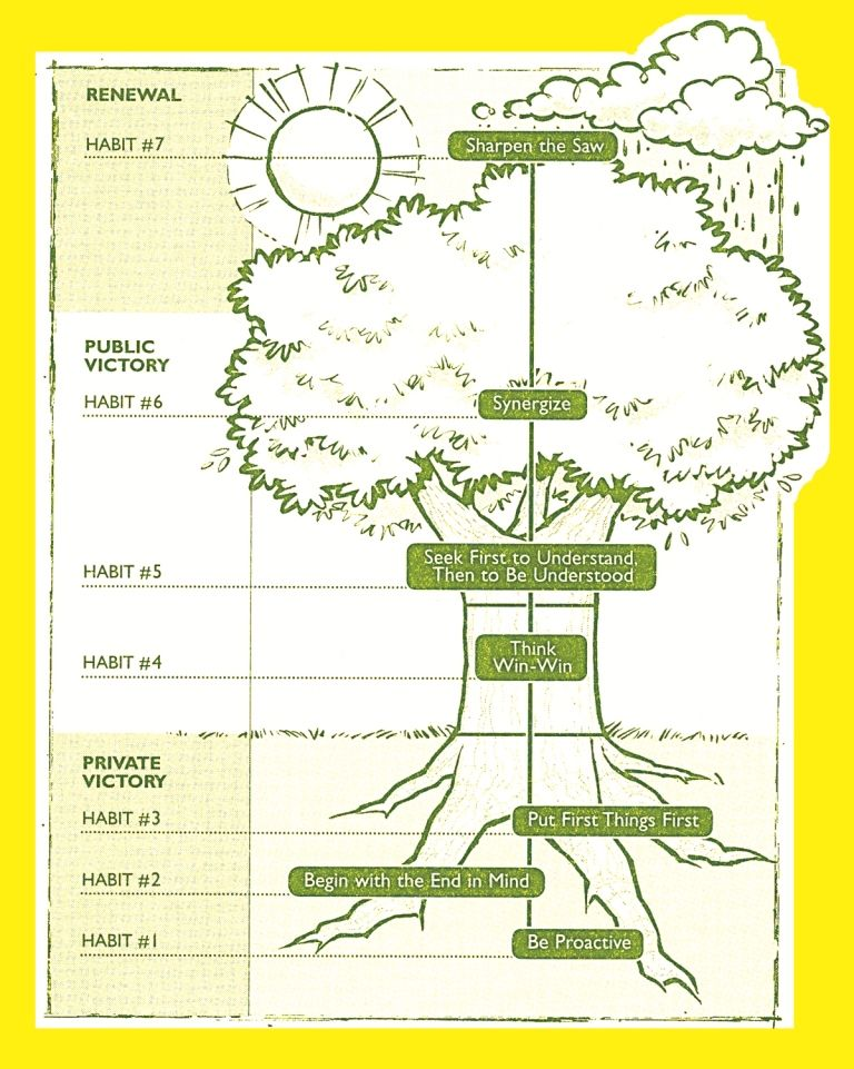 7 Habits Tree Diagram Bing Images Counseling Work Related Ideas
