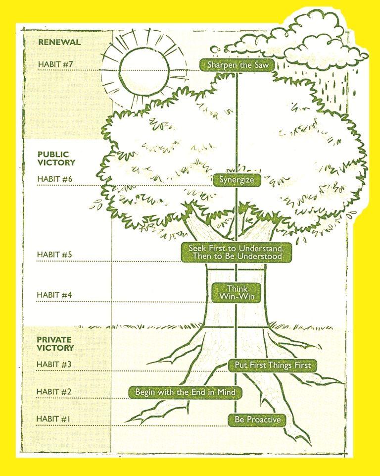 7 Habits Tree Diagram Bing Images 7 Habits Tree 7 Habits Habits