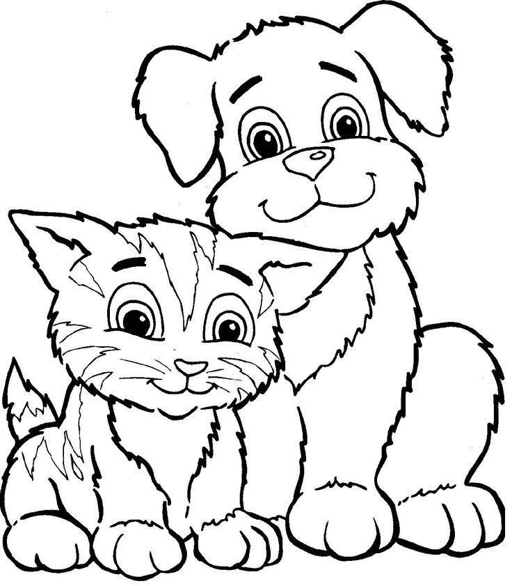 Cat And Dog Cute Coloring Page