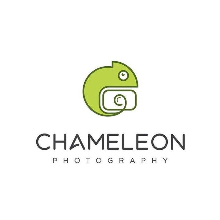 RepostBy @shibupg: - Chameleon Photography -