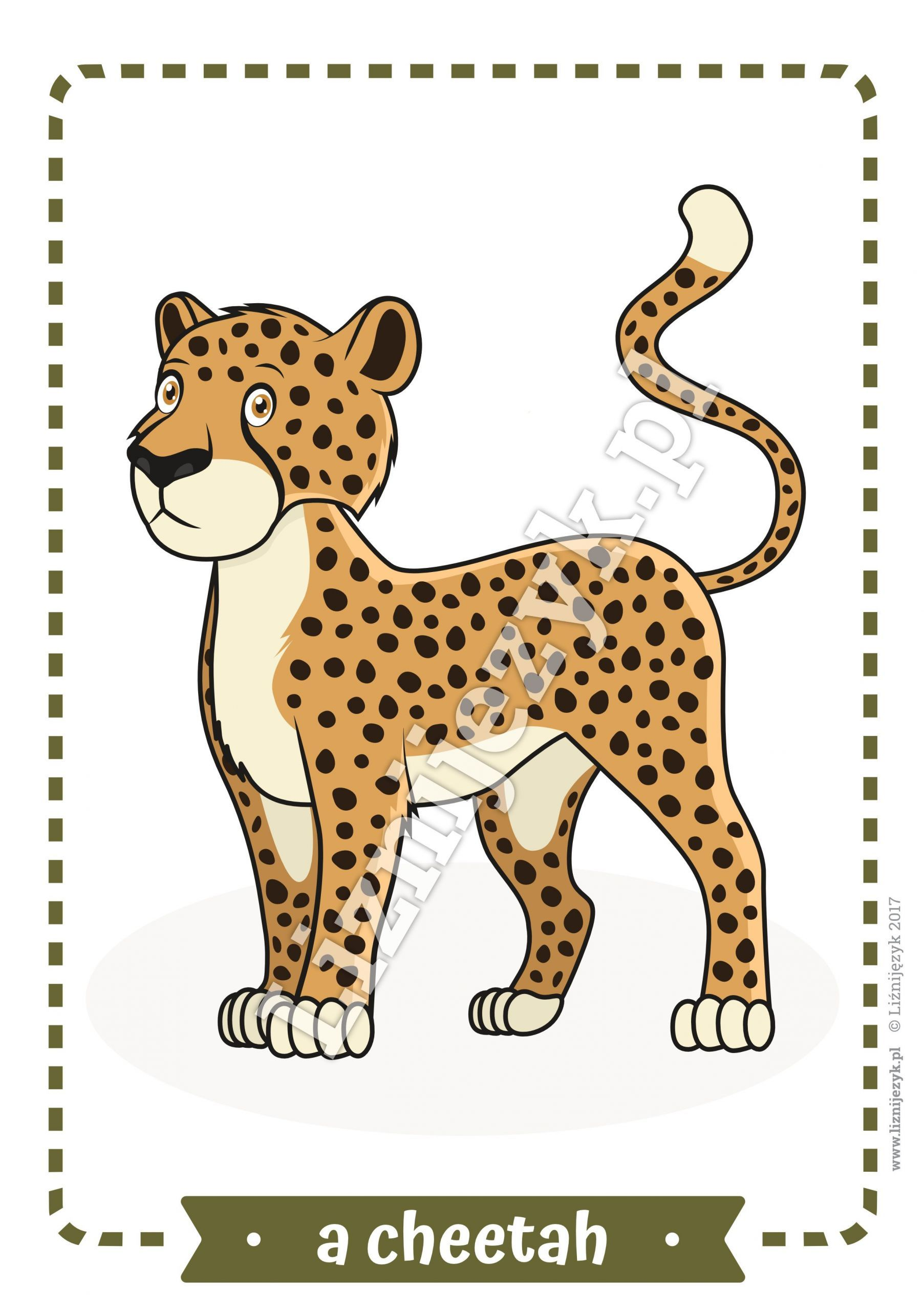 5 Wild Animals Worksheets Printables 3d0dae