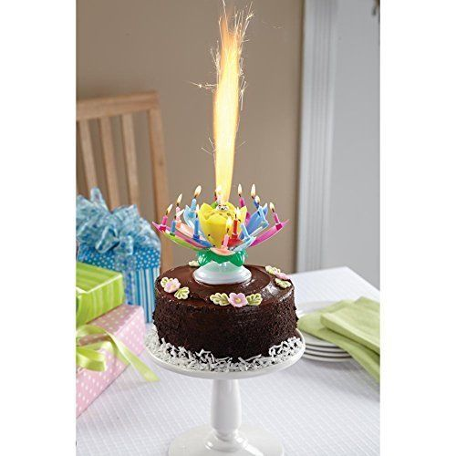 A Fun Surprise For Any Birthday Boy Or Girl This Show Stopping Flower Candle Lights Into Sparkler Folds Its Petals Back To Reveal 12 Lighted Mini
