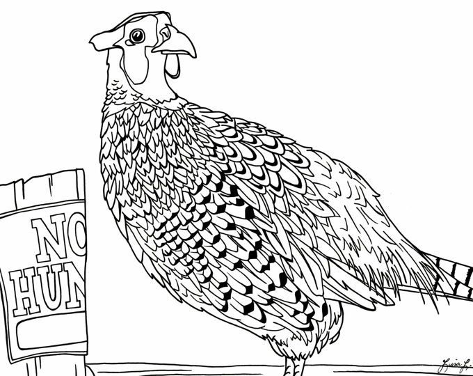 Ring Necked Pheasant Coloring Page Rustic Signs Coloring Pages