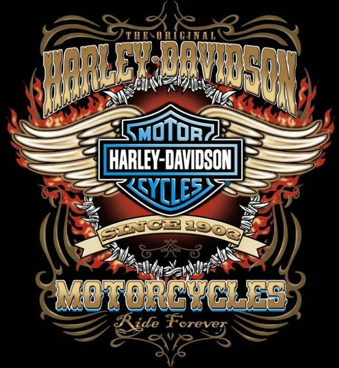 HarleyDavidson 105th anniversary logo, with curved wings