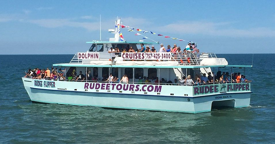 Dolphin Watching - Fishing Trips - Boat Rides in Virginia Beach | Virginia  beach, Boat, Fishing trip