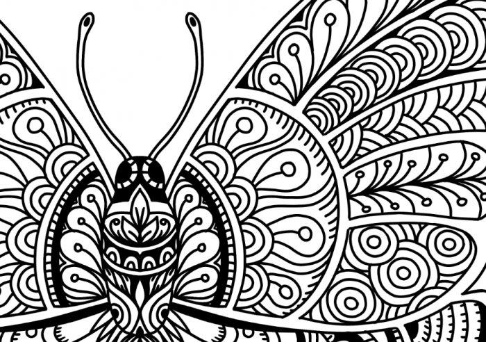 Gambar Doodle Kupu Kupu Halaman Mewarnai Bunga Halaman Mewarnai Vignette