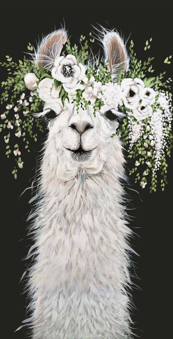 Dolly Llama Printed Canvas