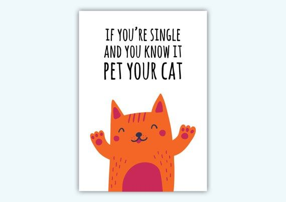 20 Funny Valentines Day Cards For Single People Looking For A