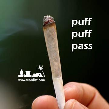 Pin On Weed Fun
