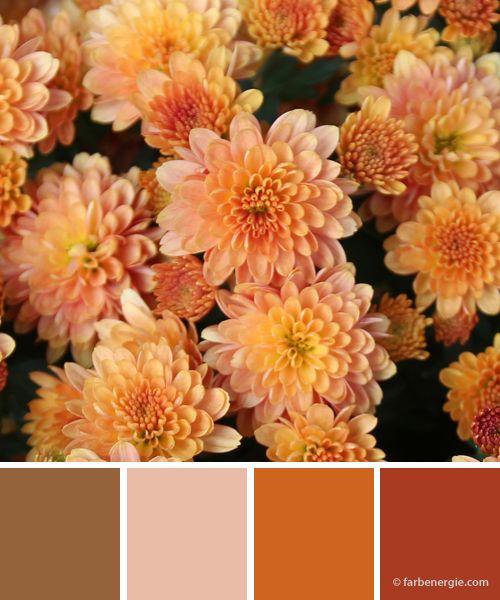 Farbinspirationen-herbst-orange