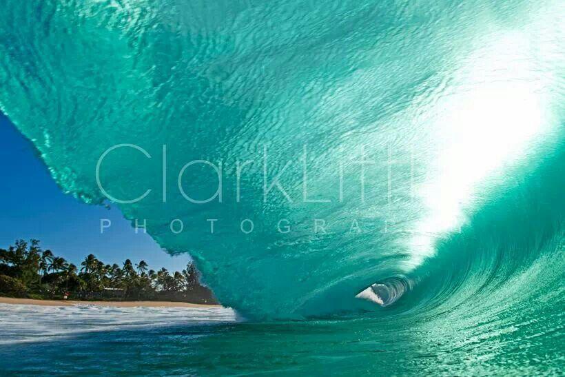 By Clark Little