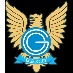 Gremio Esporte Clube Ourinhos Wikipedia A Enciclopedia Livre Em 2021 Gremio Esporte Clube Esporte Clube Escudos De Futebol