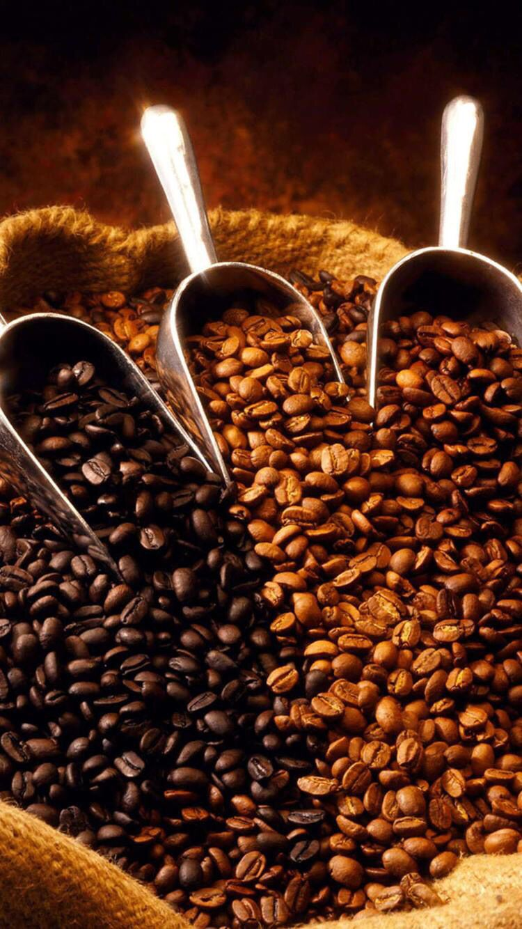 12++ Unroasted coffee beans india ideas in 2021