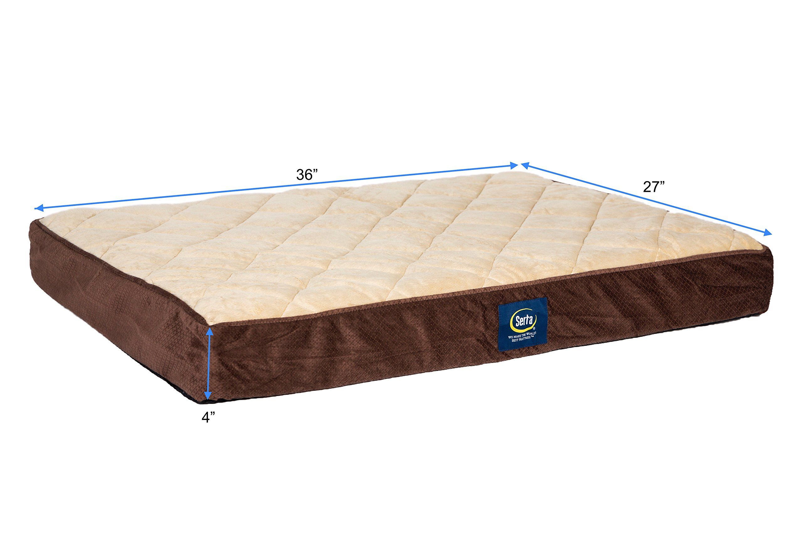 Serta Orthopedic Quilted * Find out more reviews of the